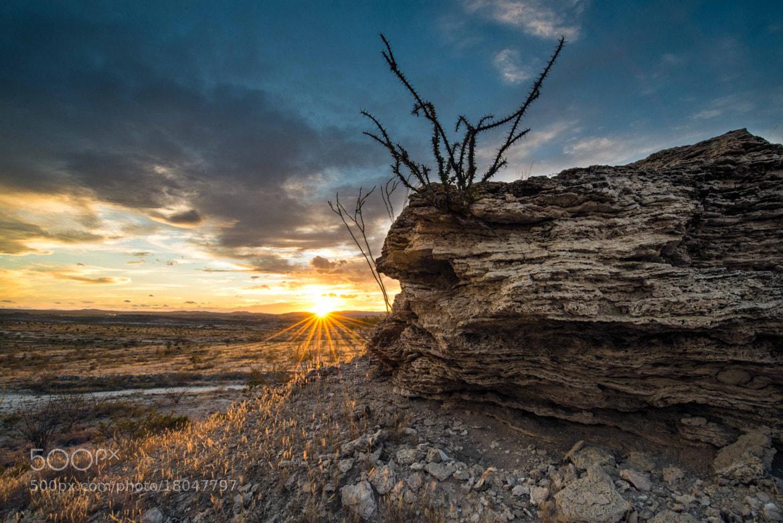 Photograph Rancho Nuevo Sunset by Oscar Jimenez on 500px