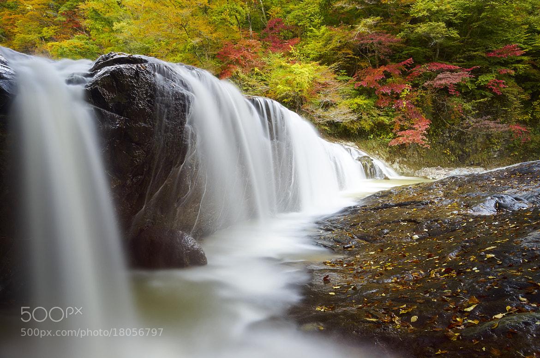 Photograph Fudonotaki Waterfall. by Hiromi Kano on 500px