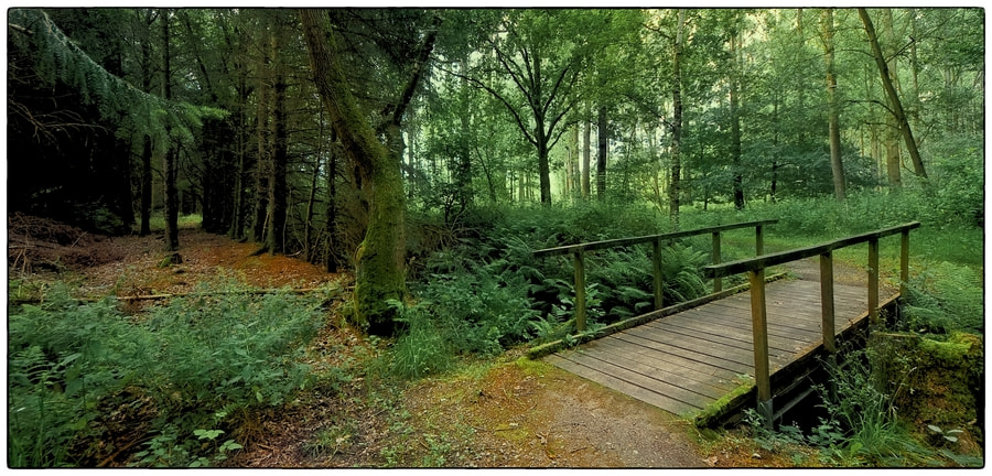 Photograph Little Bridge by Cor Pijpers on 500px