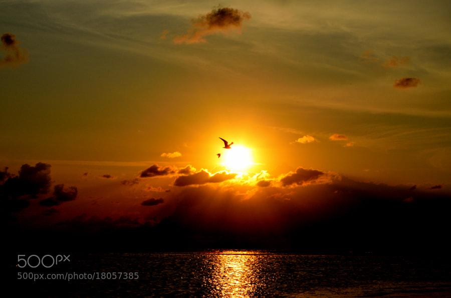 Sunrise - St. Simons Island\
