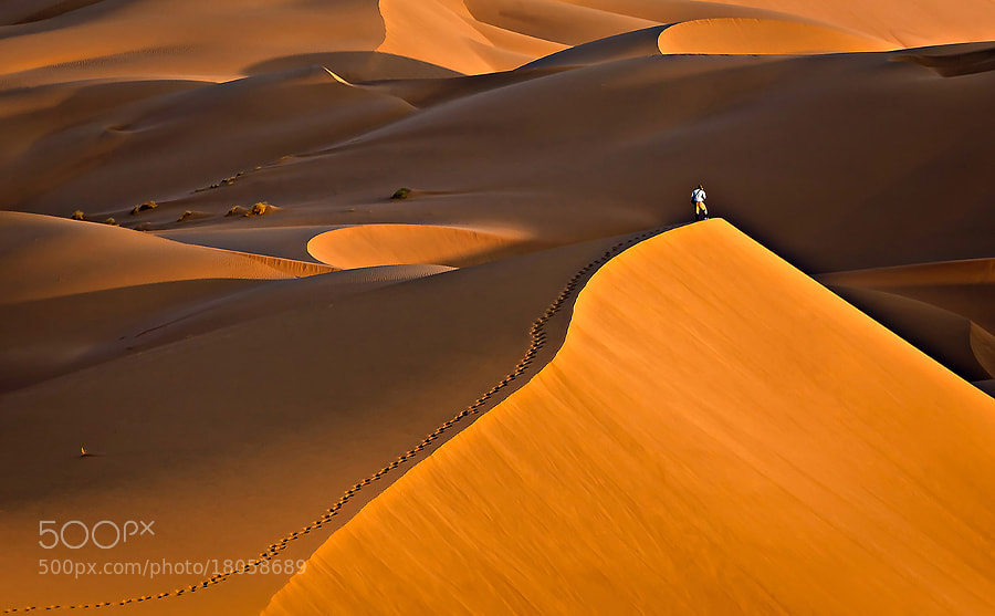 Photograph Footprint by Mohammadreza Momeni on 500px