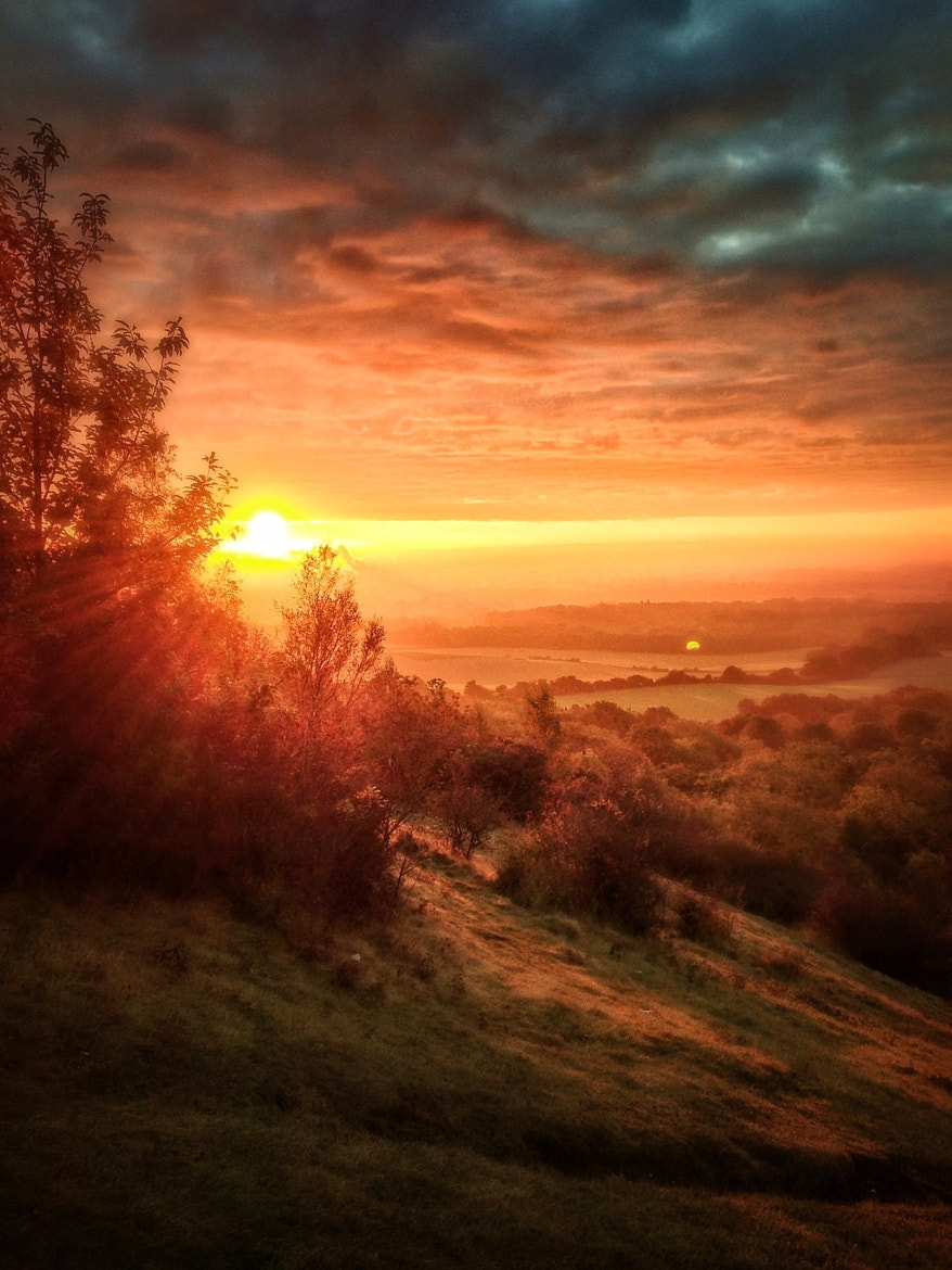 Photograph Sunrise on the North Downs by Phil Martin on 500px