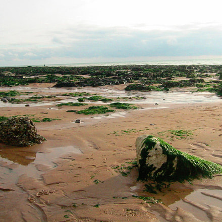 Low tide at Birling, Canon POWERSHOT S200