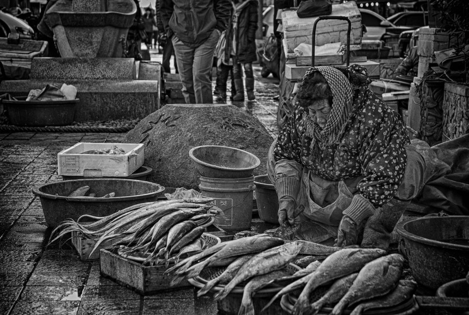 Photograph Fish Market by LEE GEON on 500px