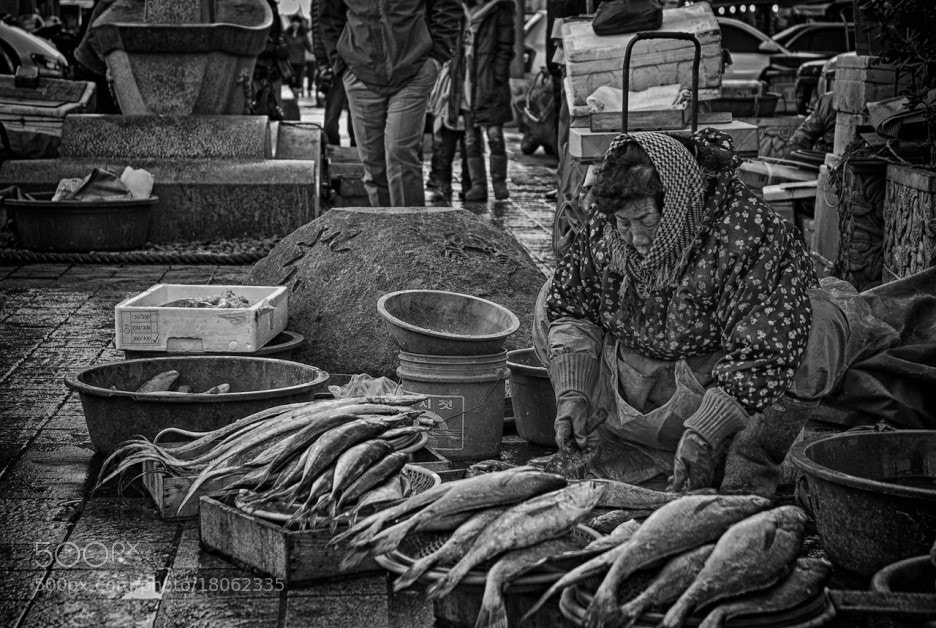 Photograph Fish Market by photographer photopia on 500px