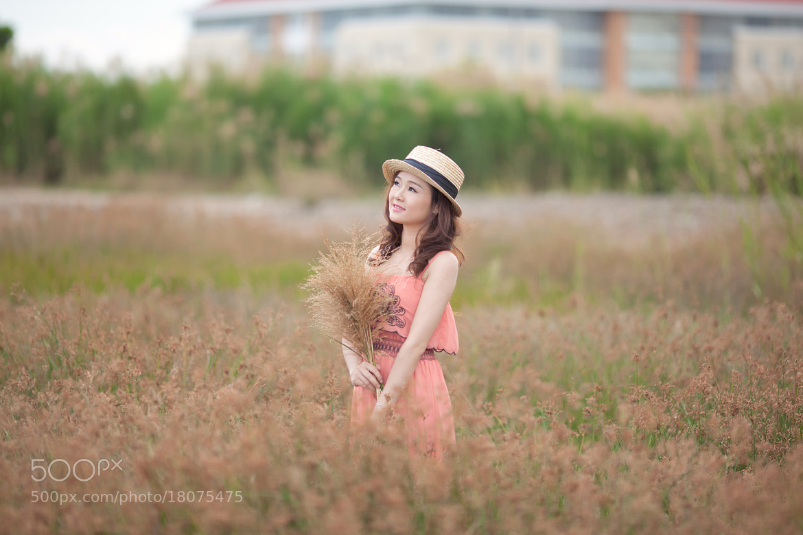 Photograph Green Field by Ivan Tuan on 500px