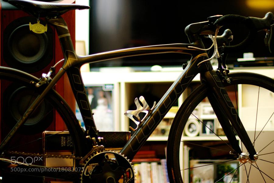 new bicycle frame by Ohno Shin'ichi (shin1ohno)) on 500px.com
