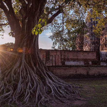 Sunset at Wat Si Sawai ,Sukhothai