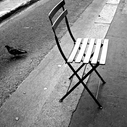 Pigeon or tourist in, Panasonic DMC-FX9