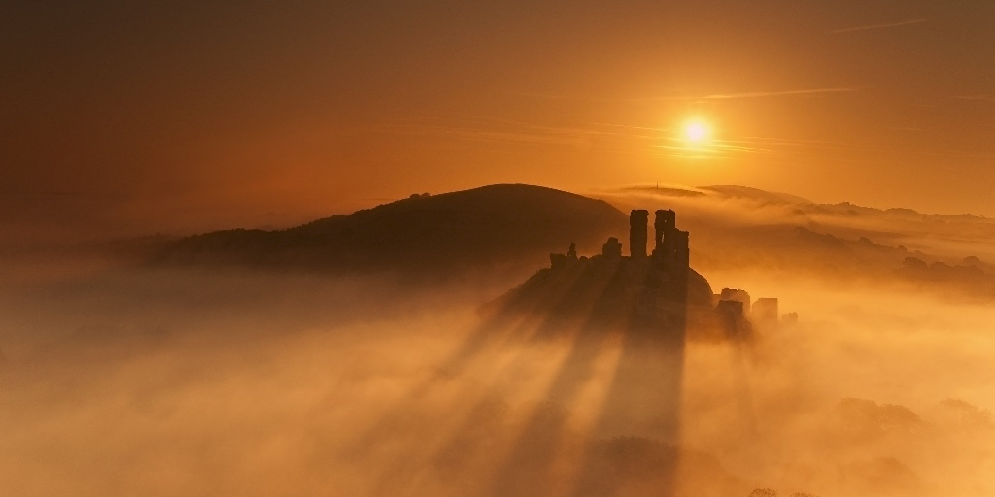 Photograph Golden mist opportunity by Andreas Jones on 500px