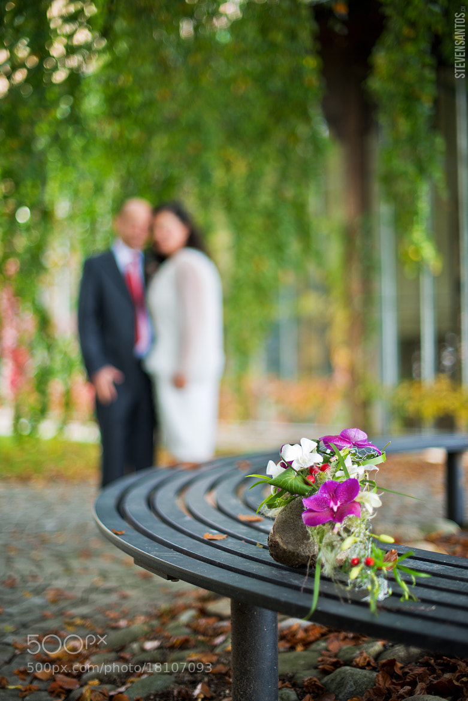 Photograph Wedding Bokeh by Steven Santos on 500px