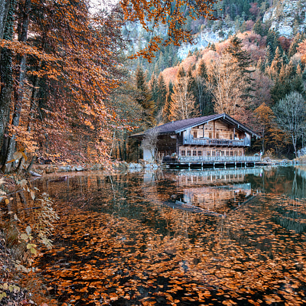 Tyrolean Fall, Sony ILCE-7RM2, Tamron SP AF 17-50mm F2.8 XR Di II LD Aspherical