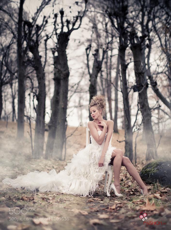 Photograph Fairytale by Eric Fagerheim on 500px
