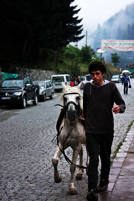 Photograph Atlı by Yeşim Kılıçarslan  on 500px