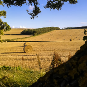 Scottish field in September by Adam Z (AZyndul)) on 500px.com