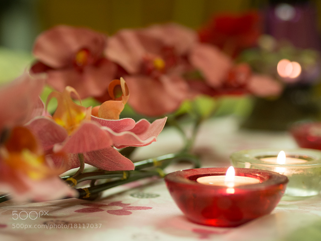 Photograph Diwali by Rachna Kayastha on 500px