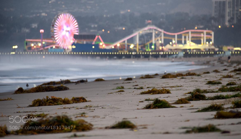Photograph Pier Bokeh by Dan Goldberger on 500px
