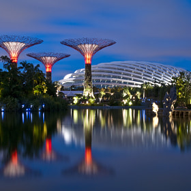 Gardens by the Bay Singapore by Heshan  de Mel (heshandemel)) on 500px.com