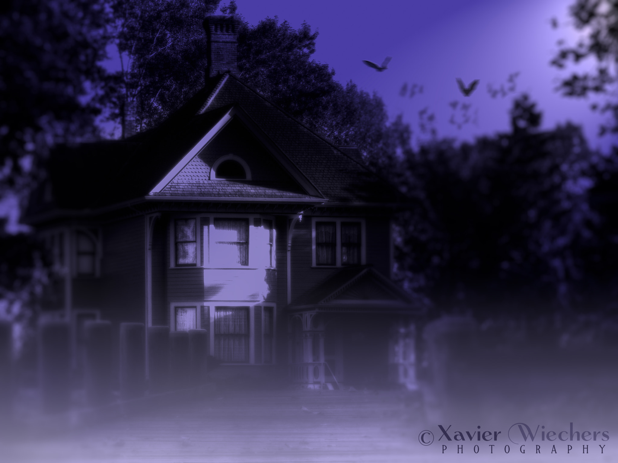Photograph Hunted House by Xavier Wiechers on 500px