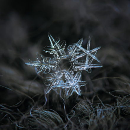 Cluster of three snowflakes, Canon POWERSHOT A650 IS