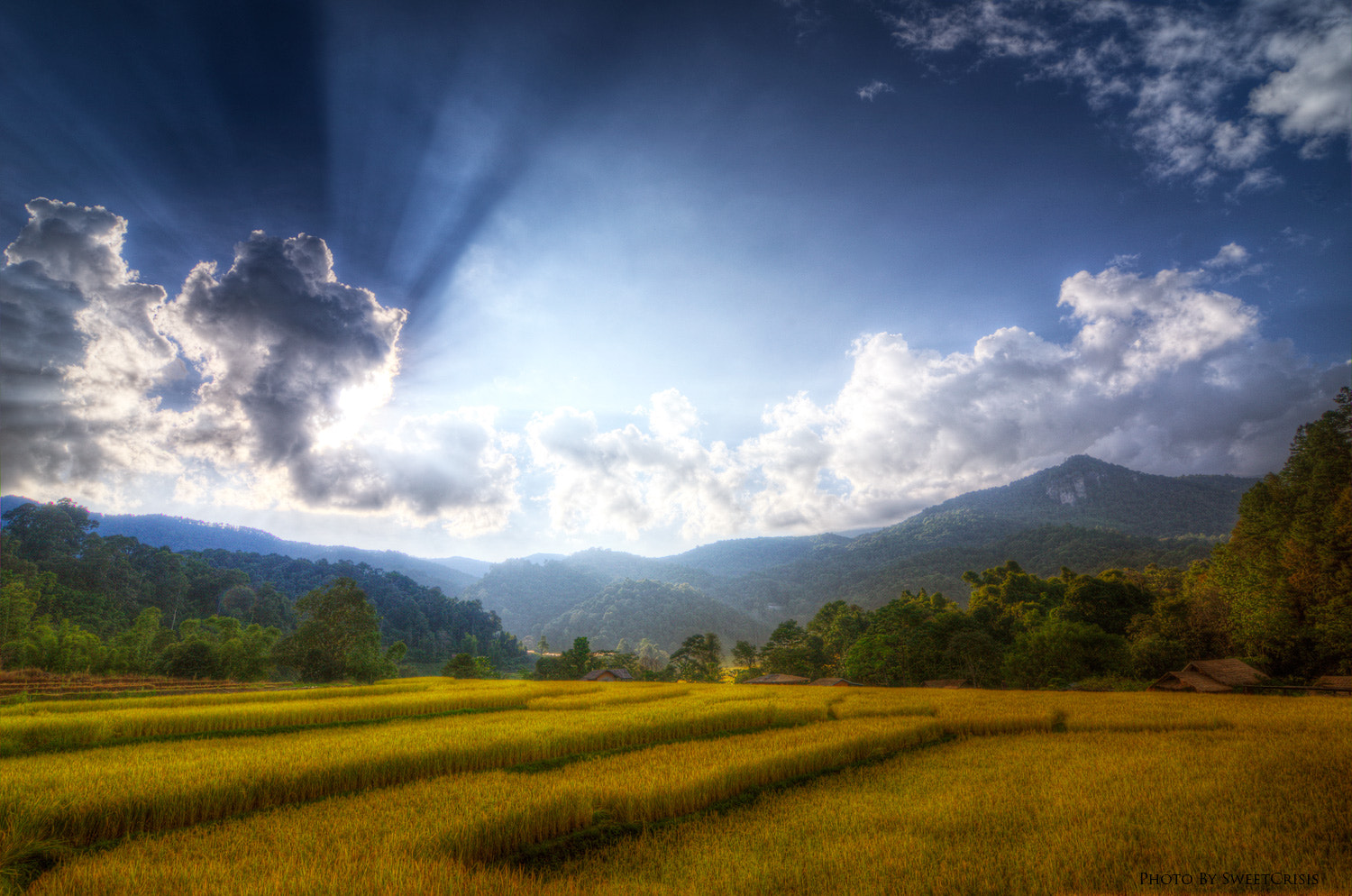 Photograph Farmland by Peerasith Chaisanit on 500px