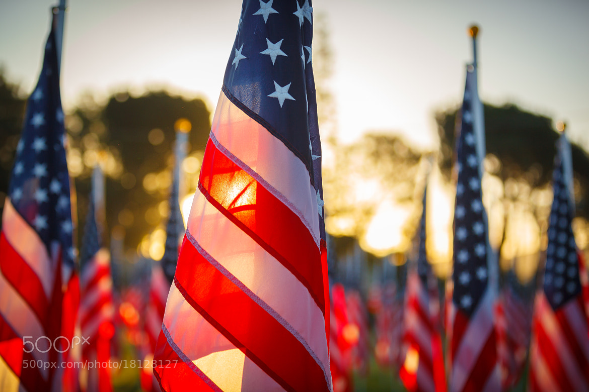 Photograph American Flags at the Covina Field of Valor by RobertLBrett on 500px