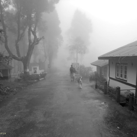|| Misty Morning ||, Nikon COOLPIX S3000