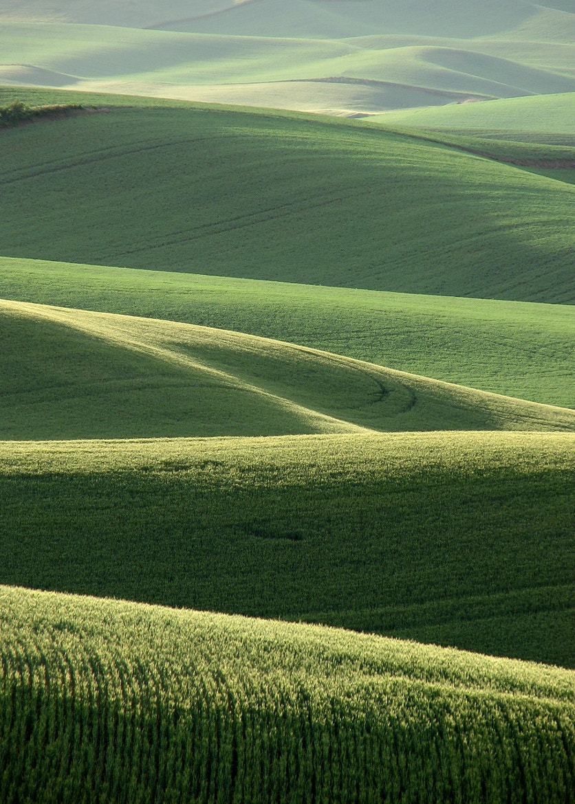 Photograph Seasons of the Palouse I: June by Ken Carper on 500px