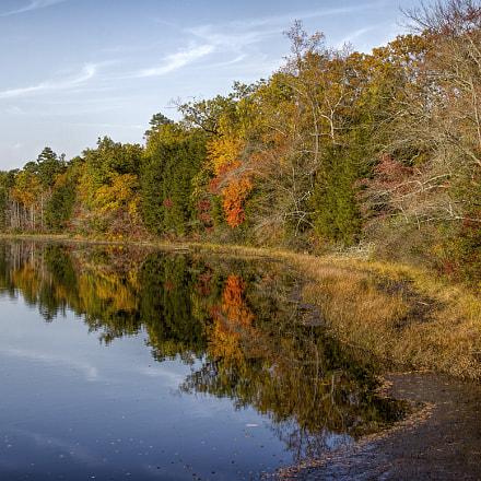 The Lake at Batsto Village