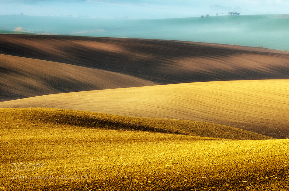 Photograph misting fields by Piotr Krol on 500px