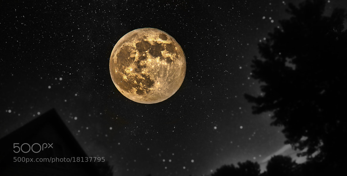 Photograph The Uber Moon by evolve IMG on 500px