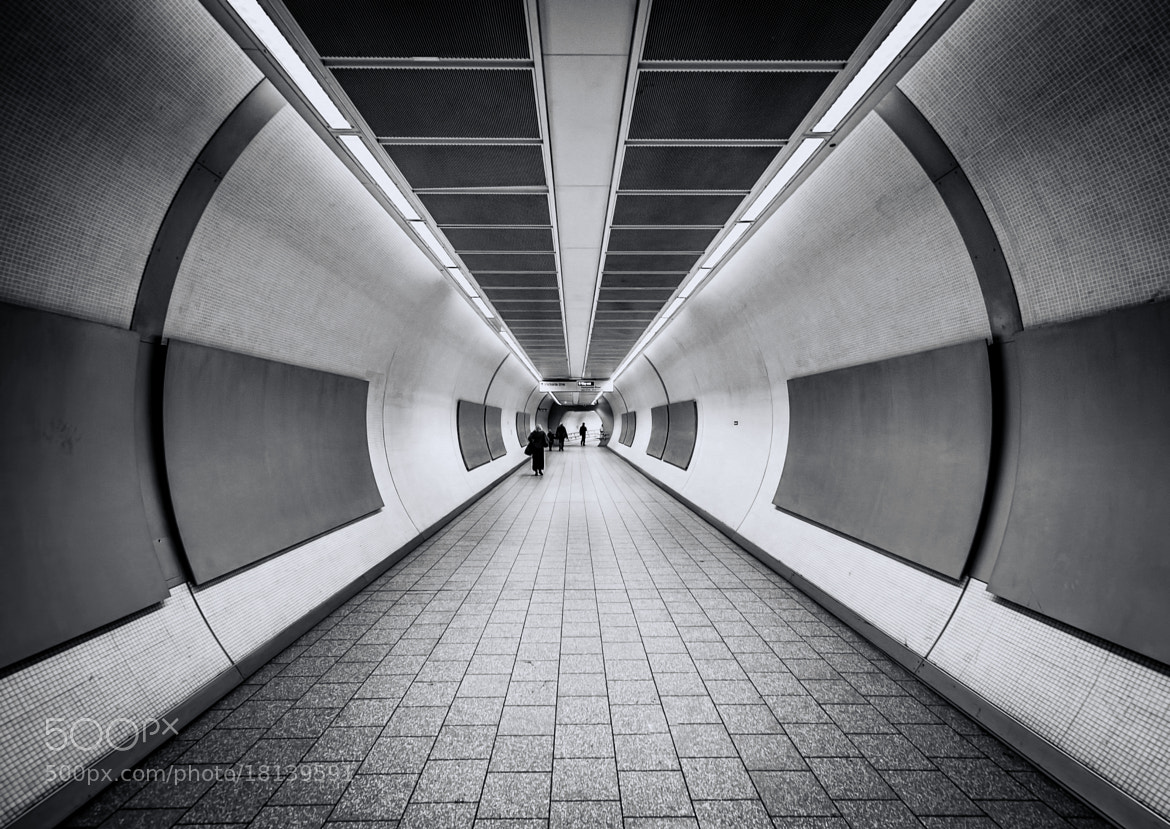 Photograph Come Follow Me by .Vulture Labs on 500px