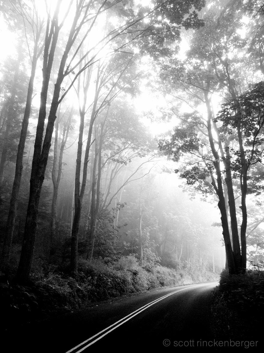 Photograph First light on foggy road by Scott  Rinckenberger on 500px