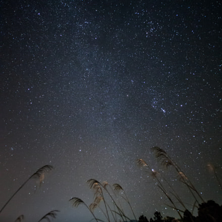 night sky in late, Canon EOS 5D MARK II, Tamron SP AF 17-35mm f/2.8-4 Di LD Aspherical IF