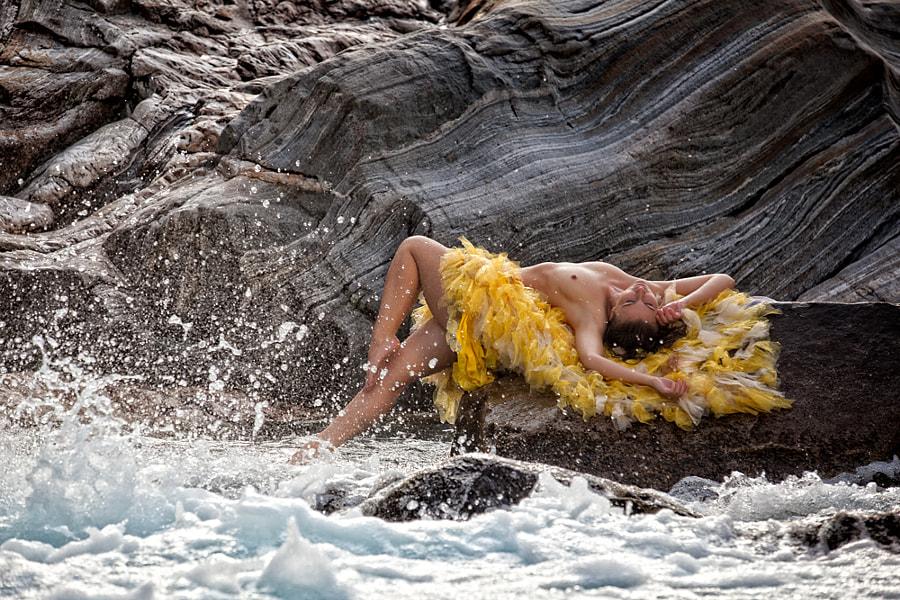 wild water - hot rocks