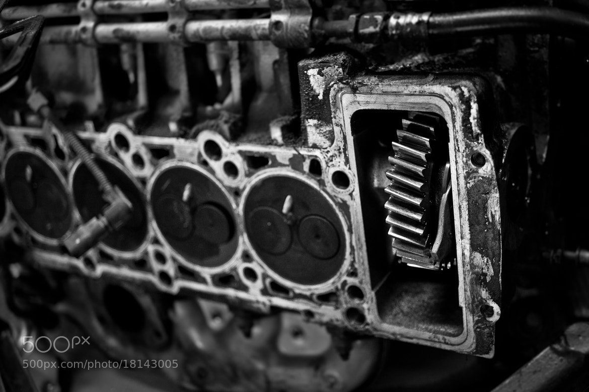 Photograph Mechanical by Mirza Buljusmic on 500px