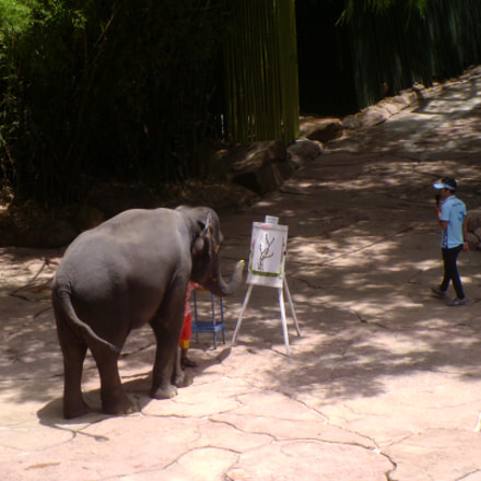 Safari World Elephant Painting, Panasonic DMC-LS5