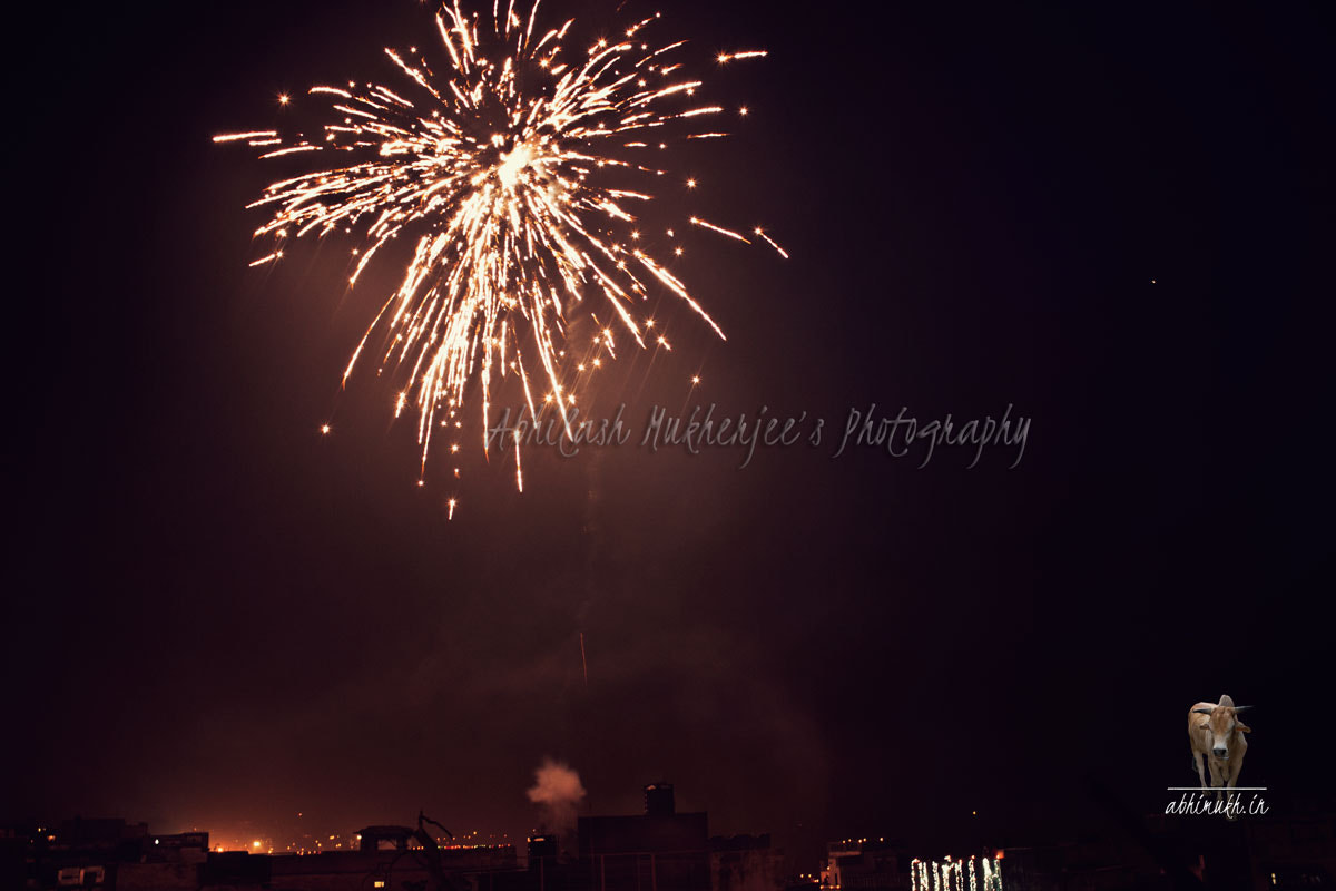 Photograph Fireworks by Abhilash Mukherjee on 500px