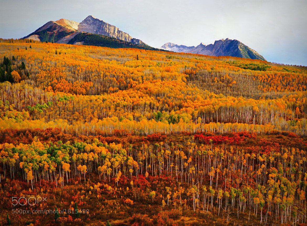 Photograph Changing Seasons by Chad Galloway on 500px