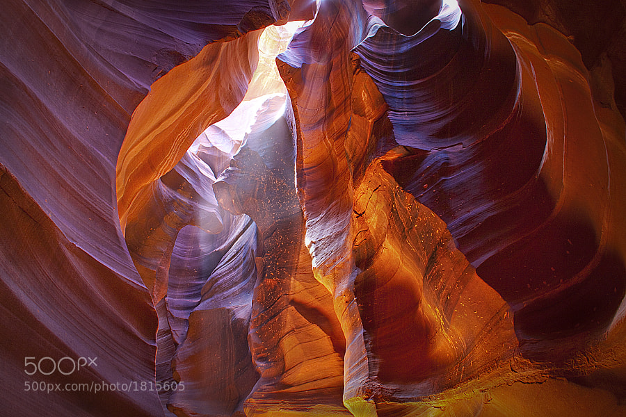 The magnificent afternoon light strikes the sculpted walls of Antelope Canyon, resulting in astonishing hues of color.