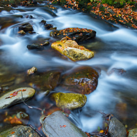 Rivers of belief by Bogdan D Photographer