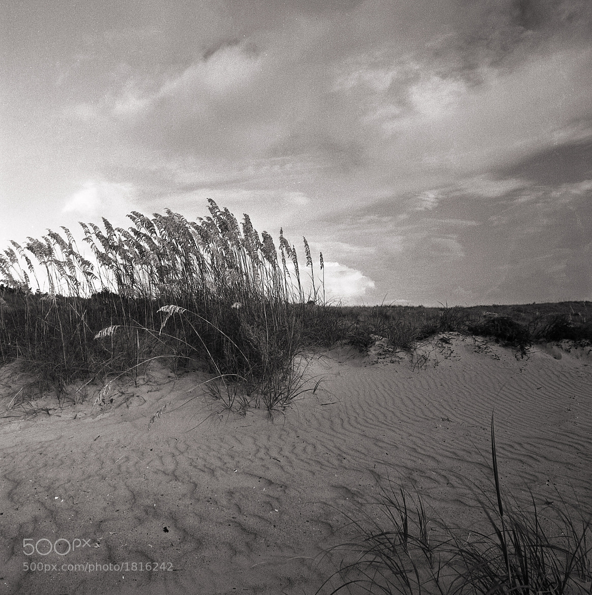 Photograph Carteret County by Holden Richards on 500px