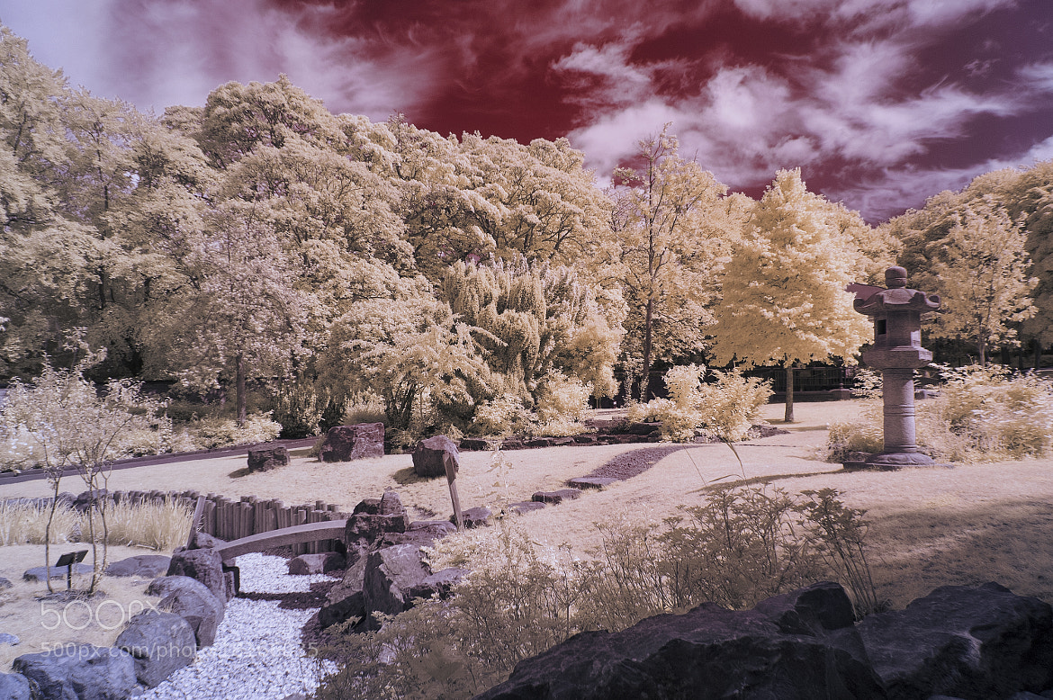 Photograph Saltwell Park Super Colour IR by Phil Whittaker on 500px