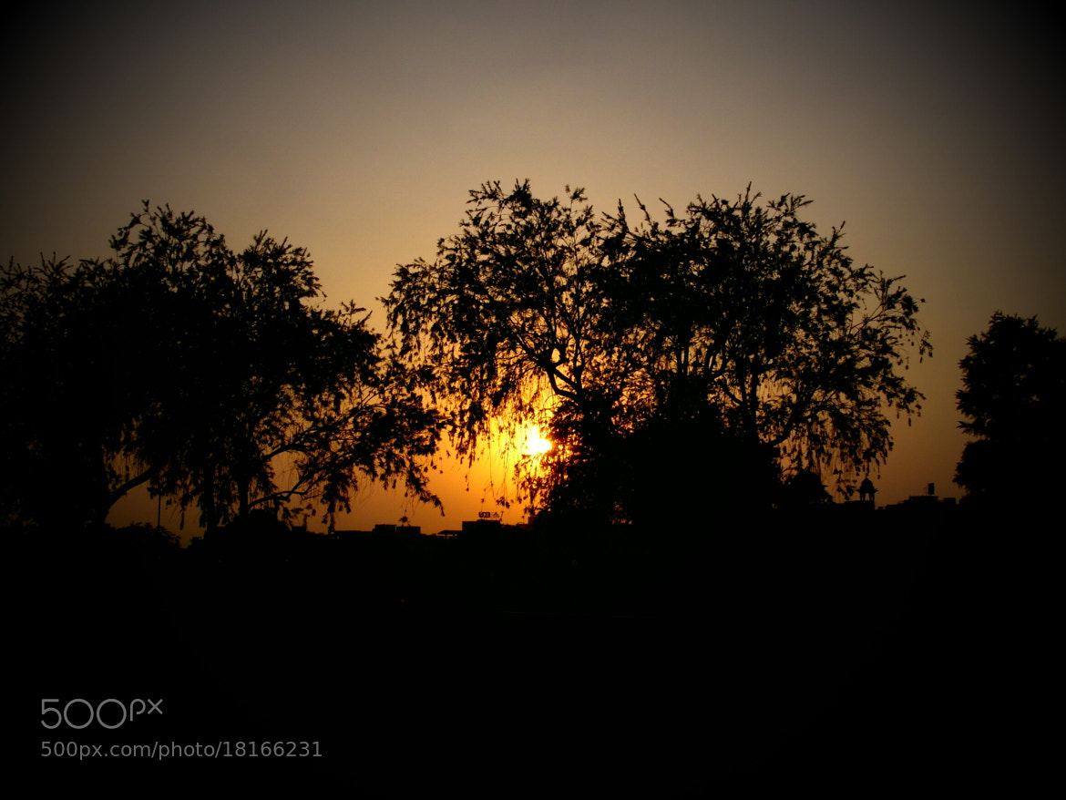Photograph Untitled by Siddhant Verma on 500px