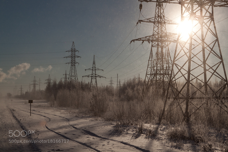 Photograph Winter by Anastasiia Malimon on 500px