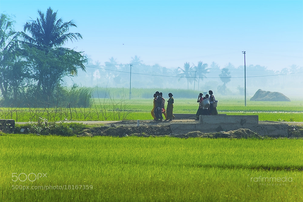 Photograph Village life by Mohamed  Rafi on 500px
