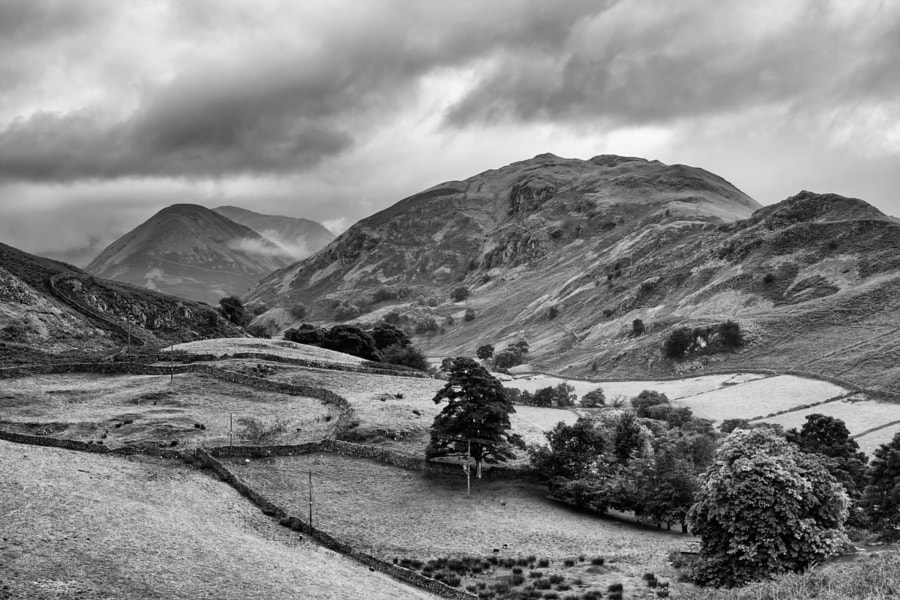 Martindale towards Dale Head
