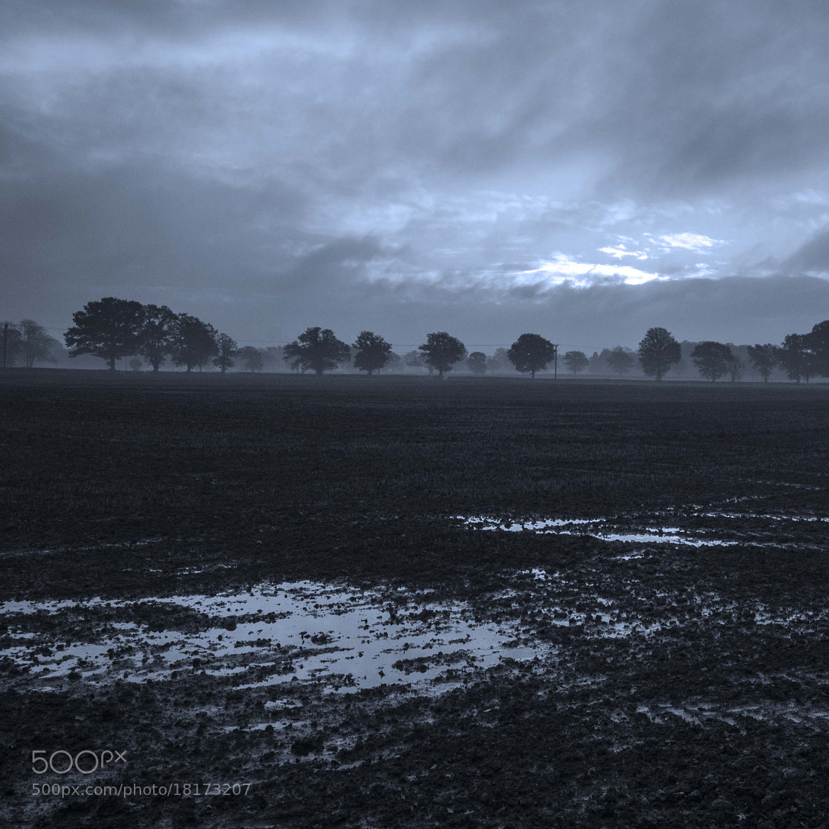 Photograph Burstow field B&W with blue tint by David Trotter on 500px