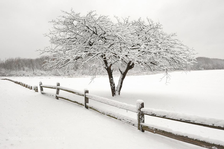 Photograph Winter landscape by Glenn Nagel on 500px