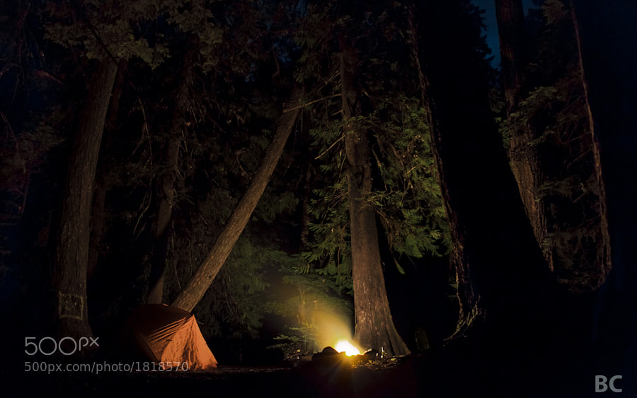 Last night my girlfriend and i escaped out of town to go camping and soaking in hot tubs. It was a great trip of relaxation and just us. She fell asleep early, but I stayed up sitting by the fire. It was such a cool campsite I had to try and take a picture :-)  No stars in this one, but they were somewhere up there above the tree canopy.